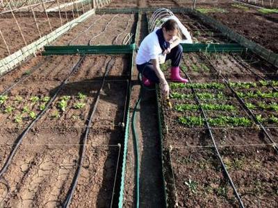 Πάτρα: Ημερίδα για τη δημιουργία δημοτικού λαχανόκηπου