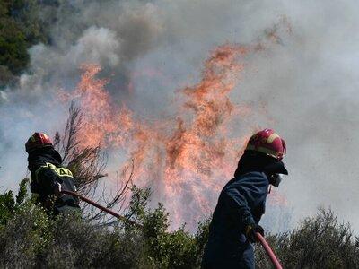 Αχαΐα: Έσβησε η φωτιά στη Δροσιά Τριταίας