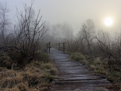 Ιστορίες με πέπλο μυστηρίου για νεράιδες και φαντάσματα στη Στροφυλιά!