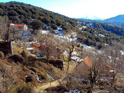 Το χωριό, 15χλμ από την Πάτρα που είχε δεκάδες κατοίκους αλλά πλέον ούτε έναν!