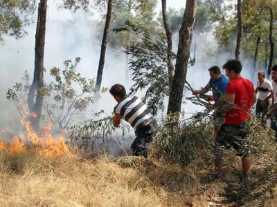Δυο φωτιές στη Δυτ. Μακεδονία από κεραυνούς