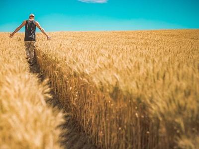 Τον Οκτώβριο το νομοσχέδιο για τους αγροτικούς συνεταιρισμούς – Εξετάζεται ο φόρος πετρελαίου στους αγρότες