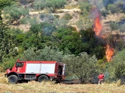 Φωτιά στη Σαλαμίνα - Προληπτικά, εκκενώθηκαν σπίτια