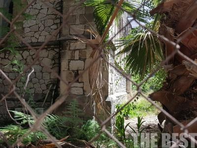 Φίδι ανέβηκε στον 4ο όροφο πολυκατοικίας, στο κέντρο της Πάτρας