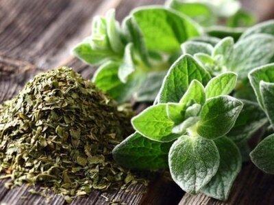 Ένα ακόμα βότανο με αντικαρκινική δράση