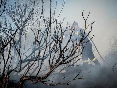 Φωτιά από κεραυνό στο Γεράκι Ηλείας