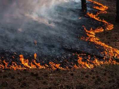 Υψηλός ο κίνδυνος πυρκαγιάς την Παρασκευή στη Δυτική Ελλάδα