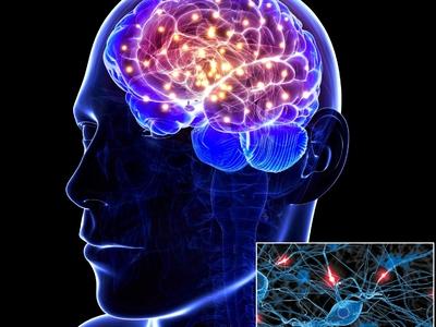 Ξεκινά τη λειτουργία του το Εθνικό Δίκτυο Ιατρικής Ακριβείας για Νευροεκφυλιστικά Νοσήματα