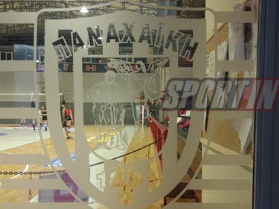 Οι ακαδημίες μπάσκετ και βόλεϊ της Παναχαϊκής