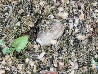 Χόμορη Ναυπακτίας: Δύο χειροβομβίδες βρέθηκαν σε αυλή σπιτιού
