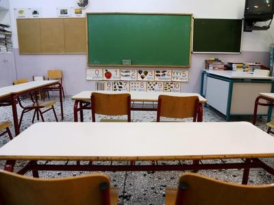 Κλείνει Δημοτικό Σχολείο της Πάτρας μετά από κρούσμα ψείρας σώματος