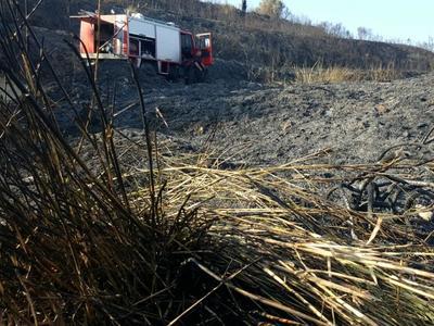 Πάτρα: Κρανίου τόπος μετά τη μεγάλη πυρκαγιά στα Άνω Μποζαΐτικα - ΒΙΝΤΕΟ & ΦΩΤΟΡΕΠΟΡΤΑΖ στα καμμένα