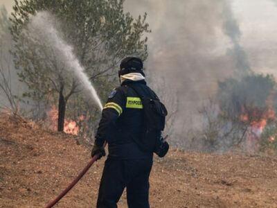 """Πυρκαγιά στο Μιχόι Αχαΐας - """"Σηκώθη..."""