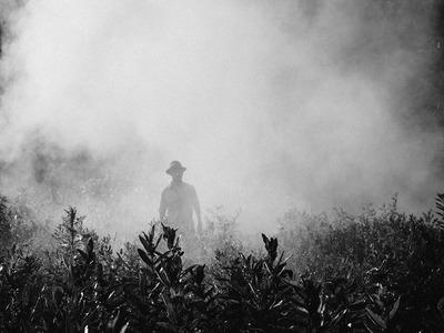 Η ρύπανση του αέρα, επιδεινώνει τα πνευμόνια όσο ένα πακέτο τσιγάρο τη μέρα