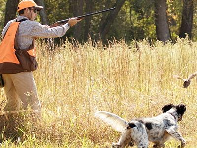 Διαδικτυακή Ημερίδα για το κυνήγι