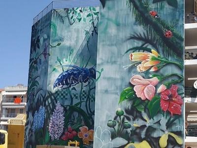 Ένας τοίχος λουλούδια! Στην οδό Λασκάρεως της Πάτρας