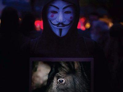 Οι Anonymous το Σάββατο στην Πάτρα - Δράση για τα ζώα στη Ρήγα Φεραίου