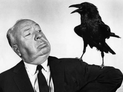 """Επιστήμονες ανακάλυψαν γιατί αυτοκτονούσαν τα """"Πουλιά"""" του Χίτσκοκ"""