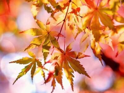 Φθινόπωρο κι επισήμως από την Τρίτη