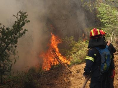 Δεν έχουν σβήσει οι φλόγες στο Φλόκα Αχαΐας