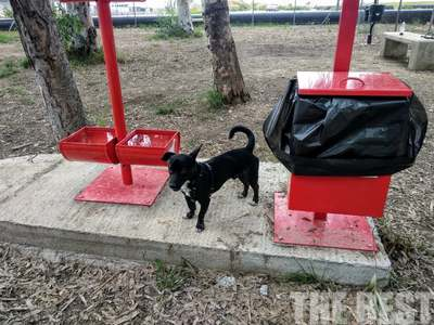 Αυτός είναι ο χώρος για τους σκύλους στο Νότιο Πάρκο- ΦΩΤΟ
