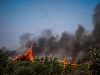 Σε ύφεση οι φωτιές σε Λάππα, Άρλα και Νιφορέικα