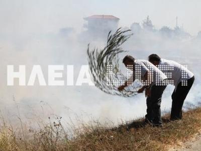 Πύργος: Οι φλόγες έφτασαν στις αυλές των σπιτιών στα Τραγανό - Δείτε Βιντεο