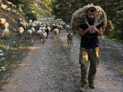 Η ζωή... αλλιώς! Ένας Έλληνας βοσκός μέσα από το instagram του!