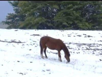 Χειμώνας με χαλάζι και χιόνι σε περιοχές της Ελλάδας