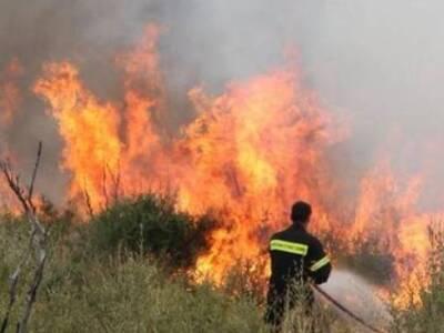 Κέρκυρα: Υπό μερικό έλεγχο η φωτιά στο Χ...