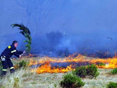 Φωτιά σε εξέλιξη στον Αλμυρό Μαγνησίας