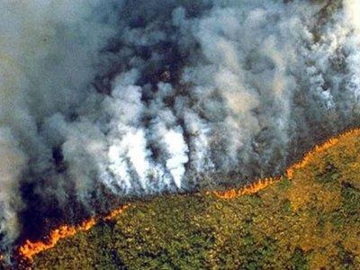 H Αμαζονία καίγεται - Σκοτείνιασε ο ουρανός στο Σάο Πάολο