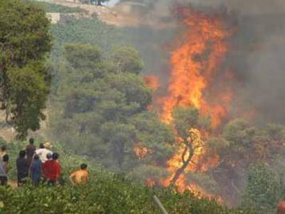 Τέσσερις φωτιές ξέσπασαν ταυτόχρονα στην Κέρκυρα