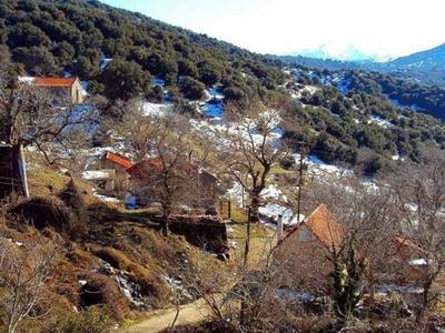 Το χωριό δίπλα στην Πάτρα που μετρούσε μερικές δεκάδες κατοίκων τον προηγούμενο αιώνα αλλά πλέον ούτε έναν