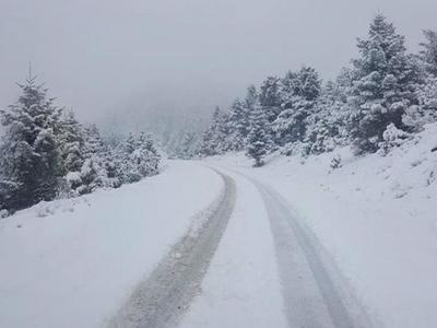Αίγιο: 80χρονη γυναίκα βρέθηκε νεκρή, θαμμένη στο χιόνι - Αγνοείτο για ώρες