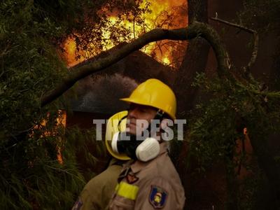 Η μάχη των πυροσβεστών σε Ζήρια - Λαμπίρ...