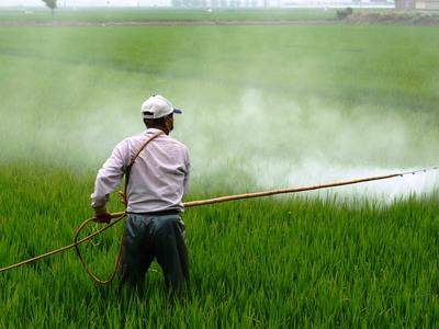 Η Κομισιόν απαγόρευσε εντομοκτόνο από την ευρωπαϊκή αγορά