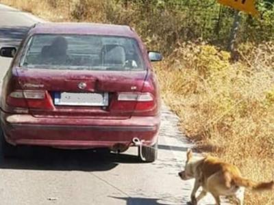 Συνελήφθη 73χρονος που έσερνε με το όχημά του σκύλο